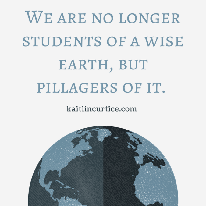 We are no longer students of a wise earth, but pillagers of it..png